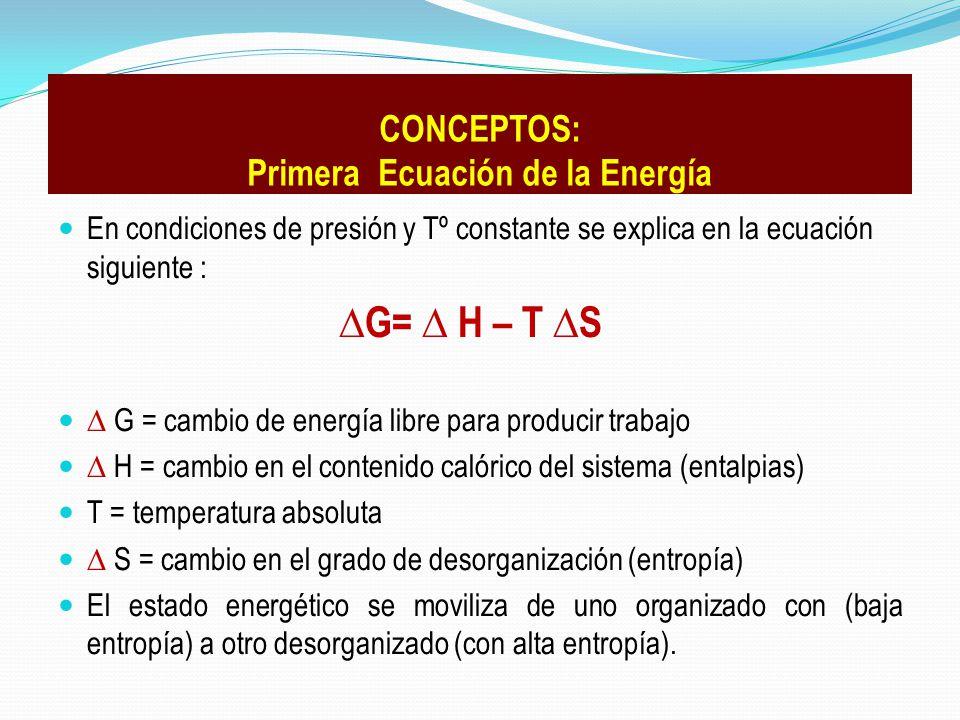 CONCEPTOS: Primera Ecuación de la Energía