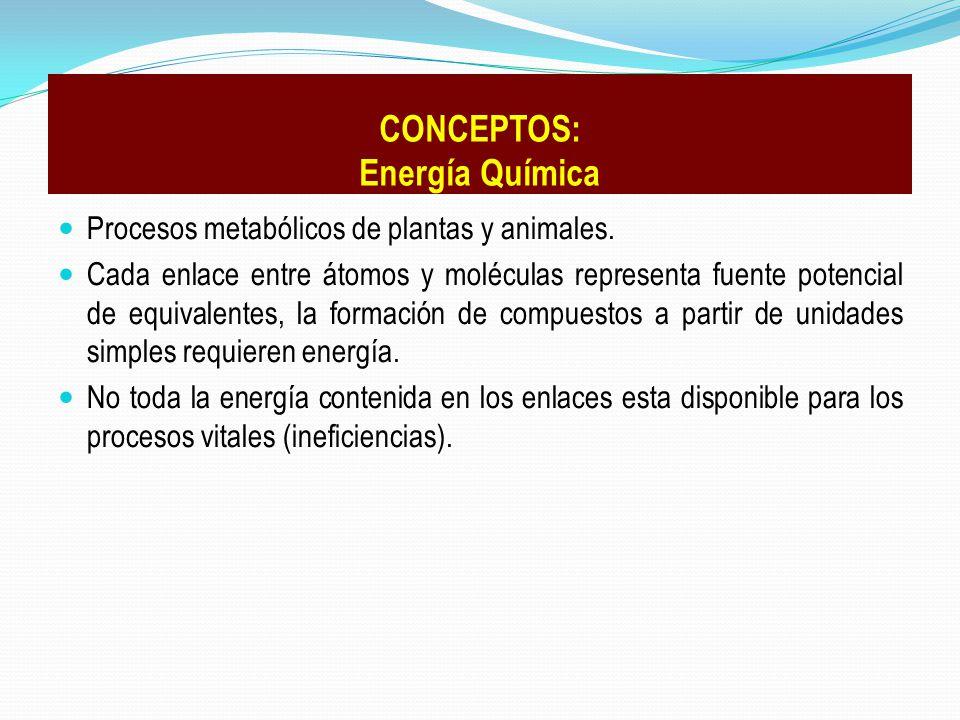 CONCEPTOS: Energía Química