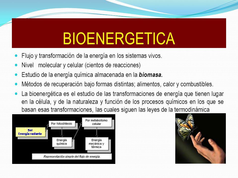 BIOENERGETICA Flujo y transformación de la energía en los sistemas vivos. Nivel molecular y celular (cientos de reacciones)