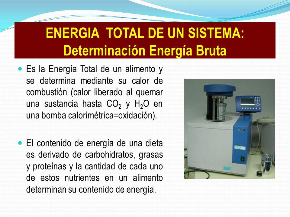 ENERGIA TOTAL DE UN SISTEMA: Determinación Energía Bruta