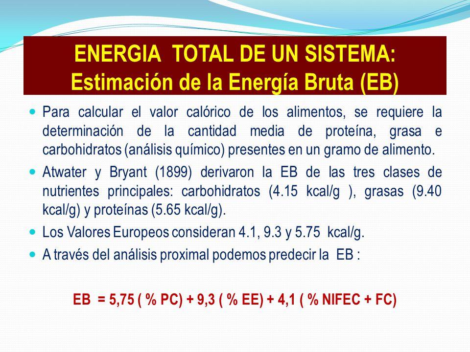 ENERGIA TOTAL DE UN SISTEMA: Estimación de la Energía Bruta (EB)