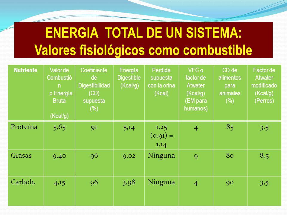 ENERGIA TOTAL DE UN SISTEMA: Valores fisiológicos como combustible