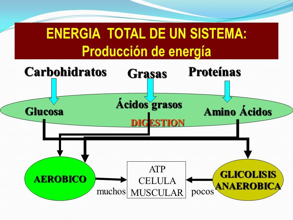 ENERGIA TOTAL DE UN SISTEMA: Producción de energía