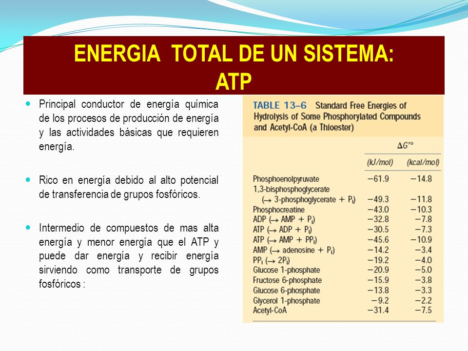 ENERGIA TOTAL DE UN SISTEMA: ATP