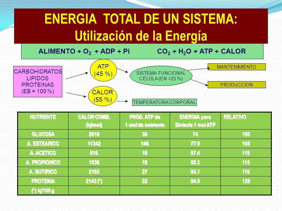 ENERGIA TOTAL DE UN SISTEMA: Utilización de la Energía