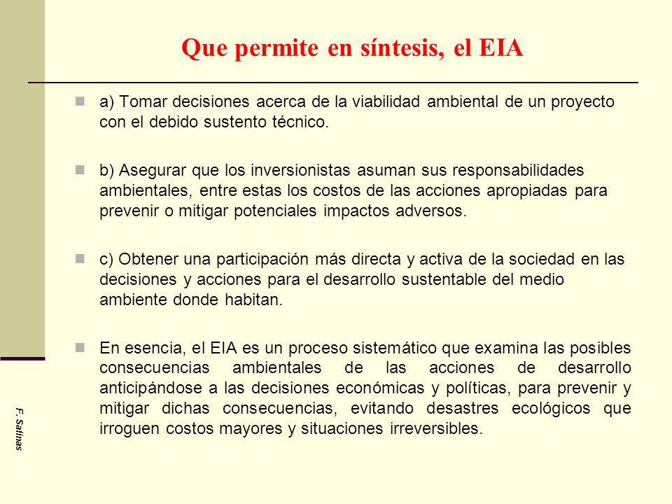 Que permite en síntesis, el EIA