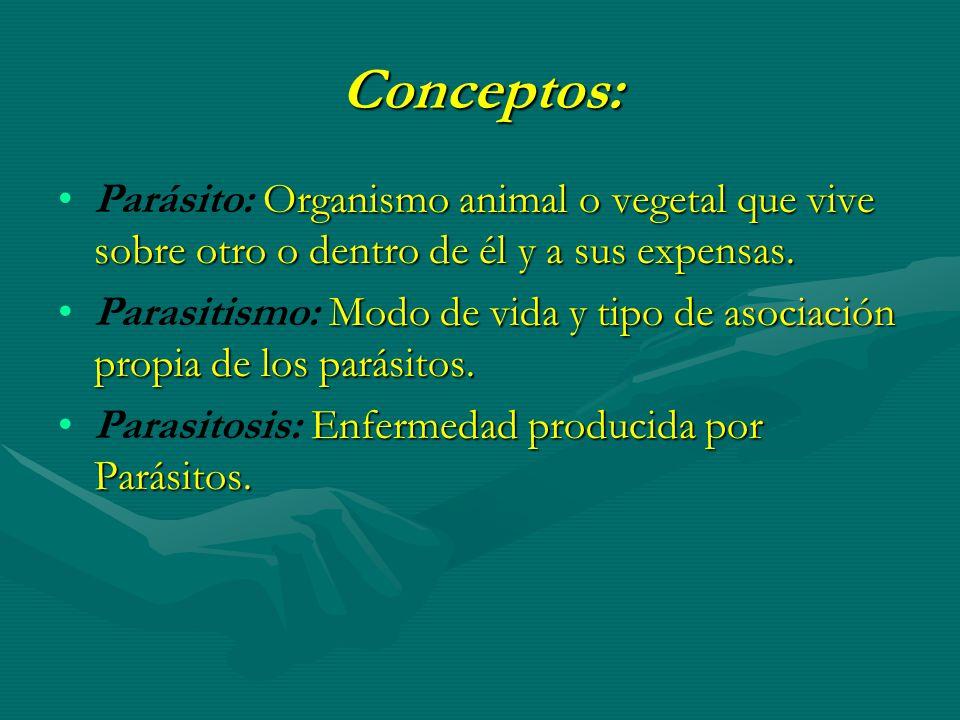 Conceptos: Parásito: Organismo animal o vegetal que vive sobre otro o dentro de él y a sus expensas.