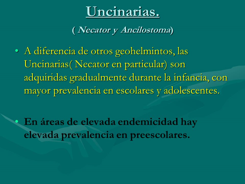Uncinarias. ( Necator y Ancilostoma)