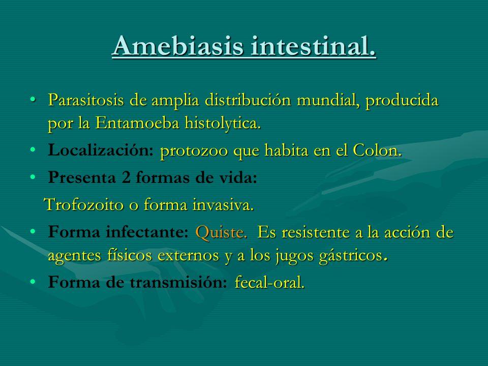 Amebiasis intestinal. Parasitosis de amplia distribución mundial, producida por la Entamoeba histolytica.