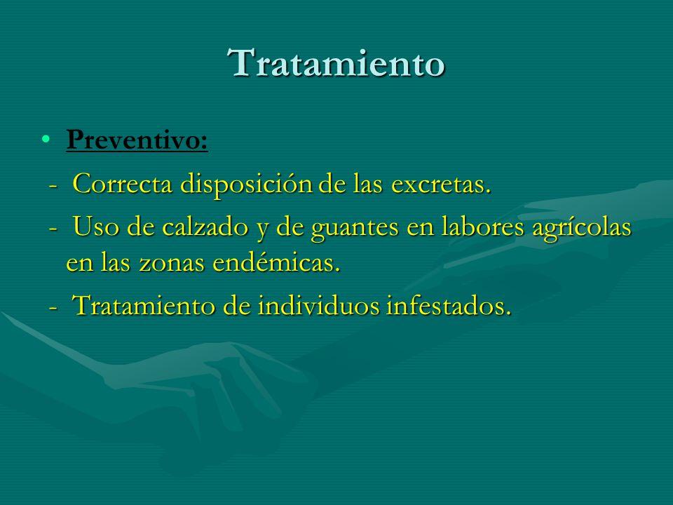 Tratamiento Preventivo: - Correcta disposición de las excretas.