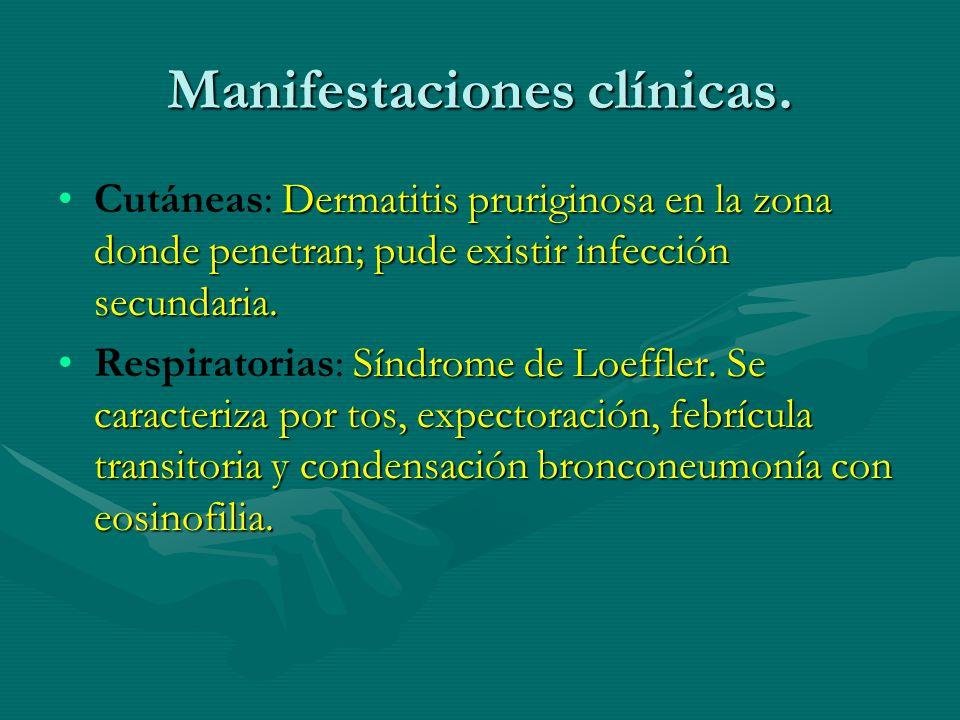 Manifestaciones clínicas.