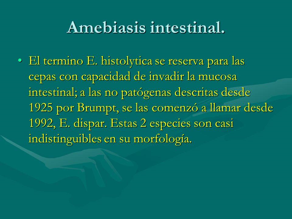 Amebiasis intestinal.