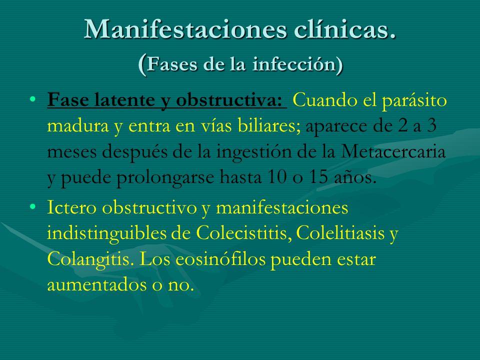 Manifestaciones clínicas. (Fases de la infección)