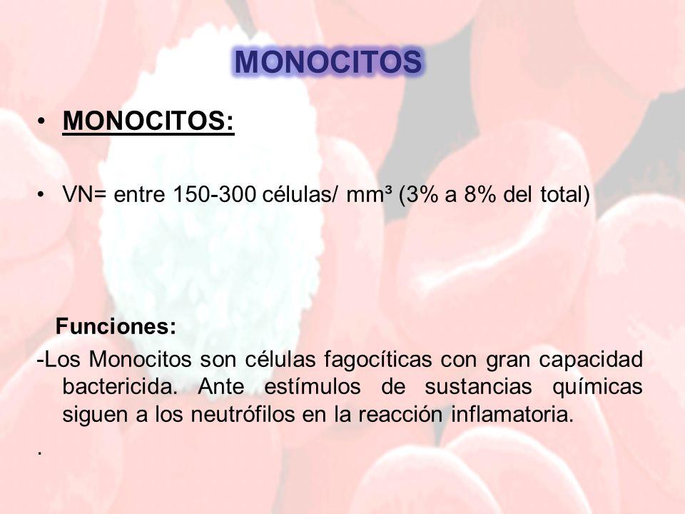 MONOCITOS MONOCITOS: VN= entre 150-300 células/ mm³ (3% a 8% del total) Funciones: