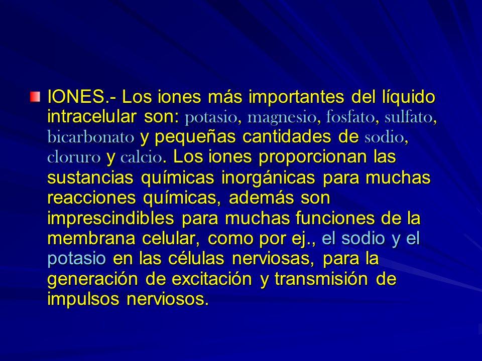 IONES.- Los iones más importantes del líquido intracelular son: potasio, magnesio, fosfato, sulfato, bicarbonato y pequeñas cantidades de sodio, cloruro y calcio.