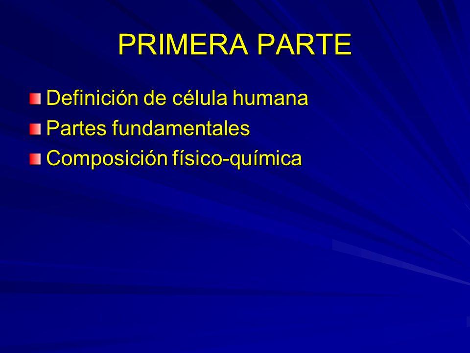 PRIMERA PARTE Definición de célula humana Partes fundamentales