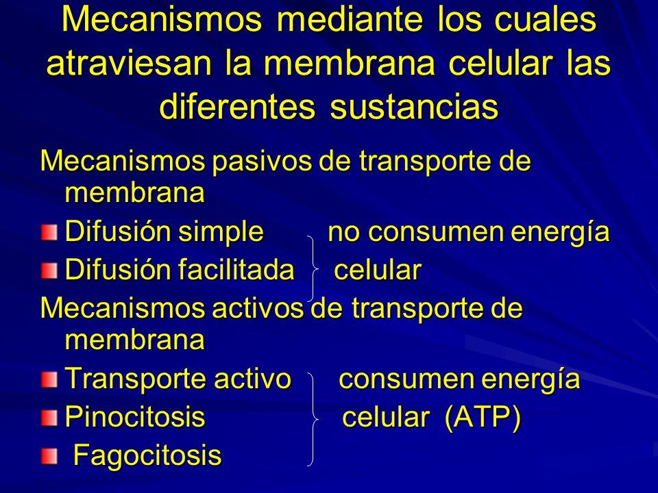 Mecanismos mediante los cuales atraviesan la membrana celular las diferentes sustancias