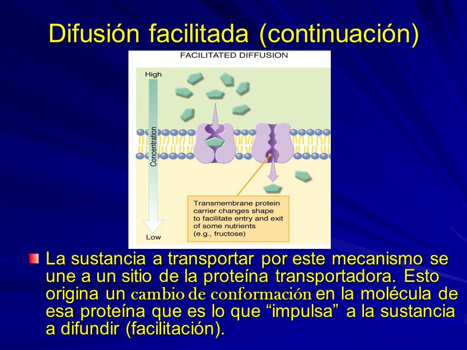Difusión facilitada (continuación)
