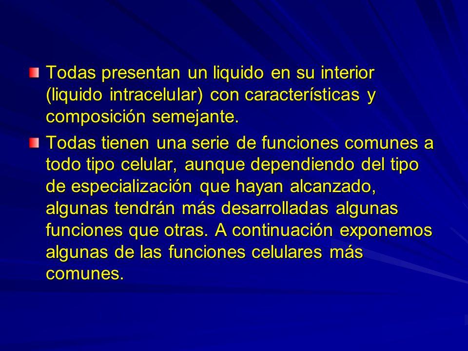 Todas presentan un liquido en su interior (liquido intracelular) con características y composición semejante.