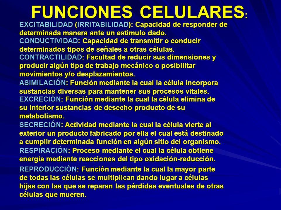FUNCIONES CELULARES: EXCITABILIDAD (IRRITABILIDAD): Capacidad de responder de determinada manera ante un estímulo dado.