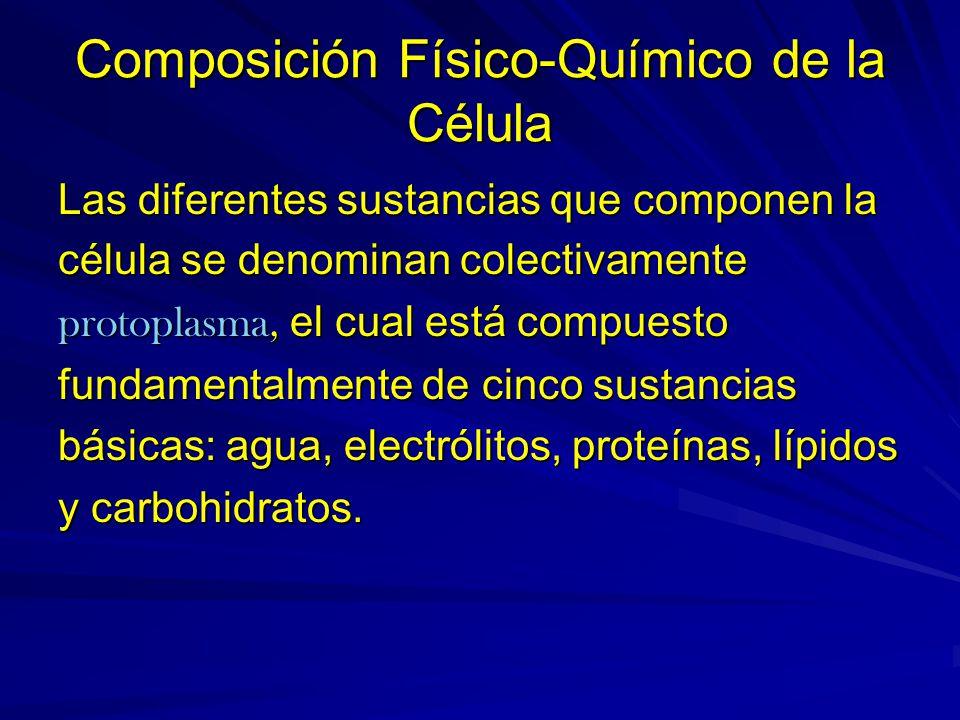 Composición Físico-Químico de la Célula