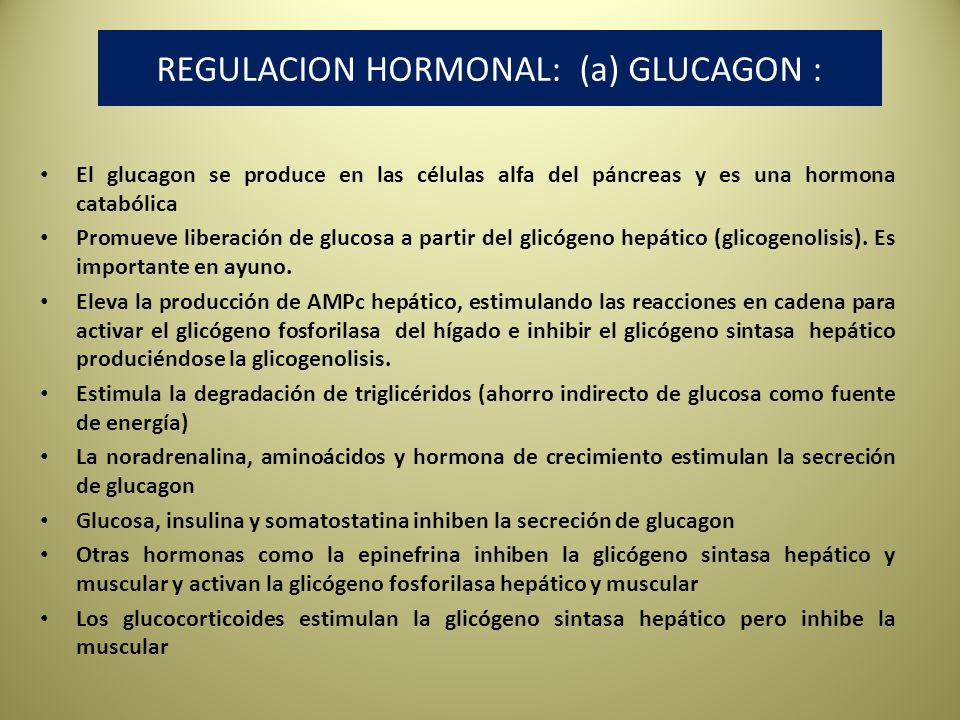 REGULACION HORMONAL: (a) GLUCAGON :