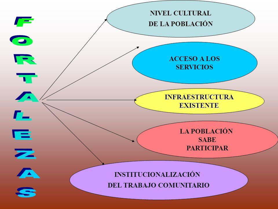 INSTITUCIONALIZACIÓN DEL TRABAJO COMUNITARIO