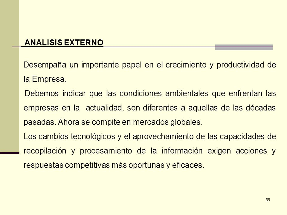 ANALISIS EXTERNO Desempaña un importante papel en el crecimiento y productividad de la Empresa.