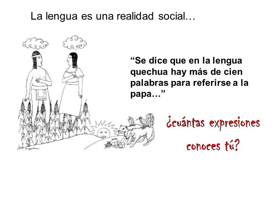 ¿cuántas expresiones conoces tú La lengua es una realidad social…