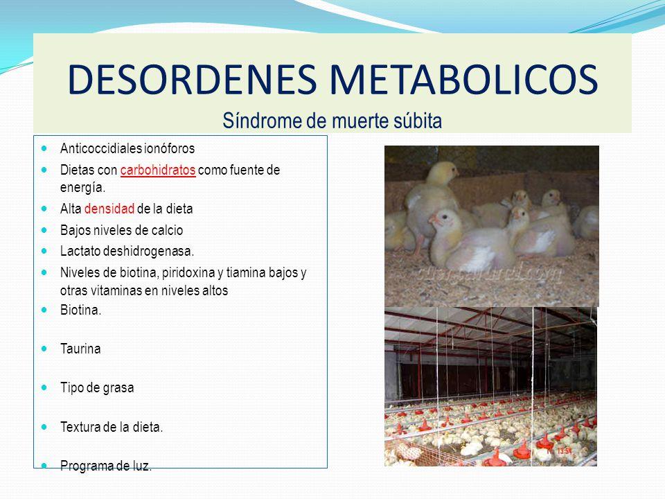 DESORDENES METABOLICOS Síndrome de muerte súbita