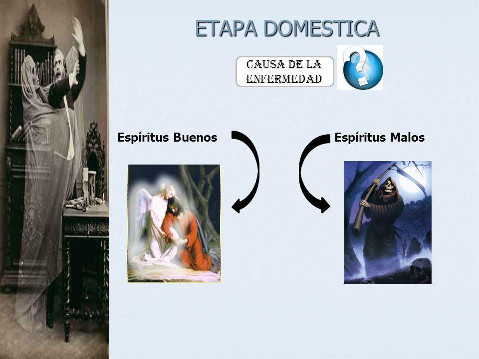 ETAPA DOMESTICA Causa de la Enfermedad Espíritus Buenos