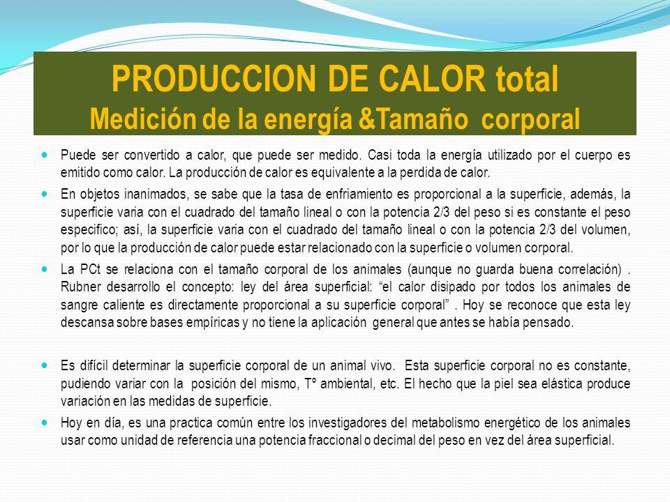 PRODUCCION DE CALOR total Medición de la energía &Tamaño corporal