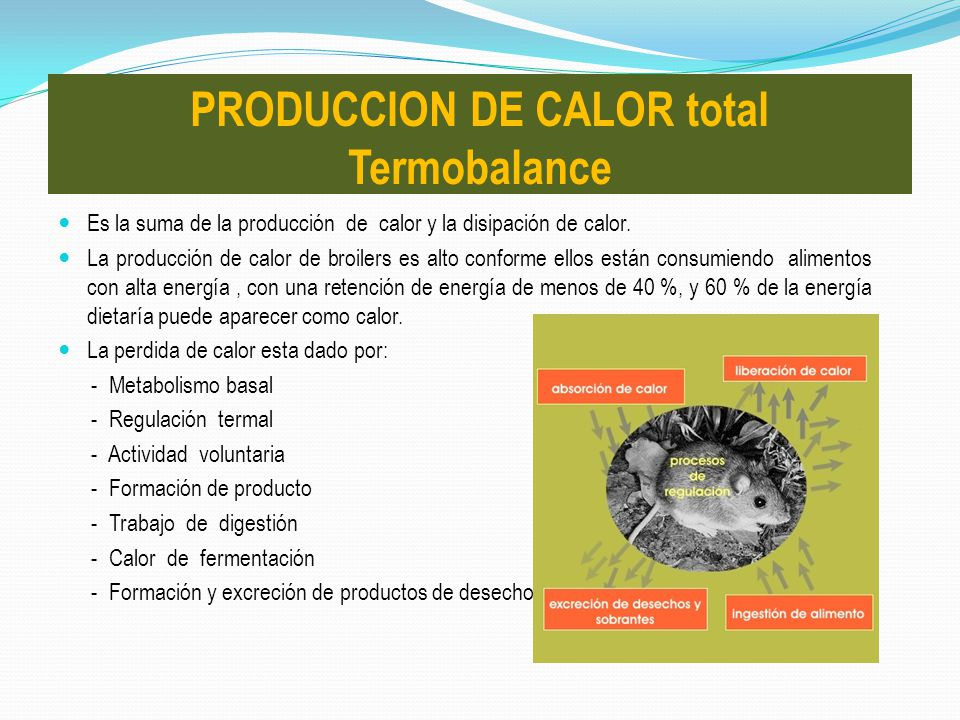 PRODUCCION DE CALOR total Termobalance