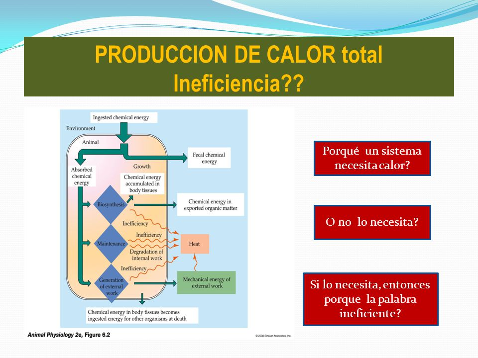 PRODUCCION DE CALOR total Ineficiencia