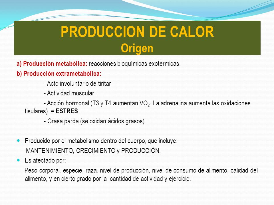 PRODUCCION DE CALOR Origen