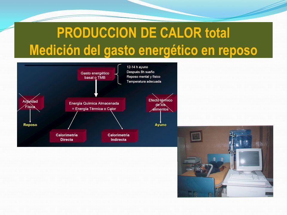 PRODUCCION DE CALOR total Medición del gasto energético en reposo
