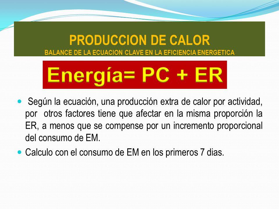 PRODUCCION DE CALOR BALANCE DE LA ECUACION CLAVE EN LA EFICIENCIA ENERGETICA