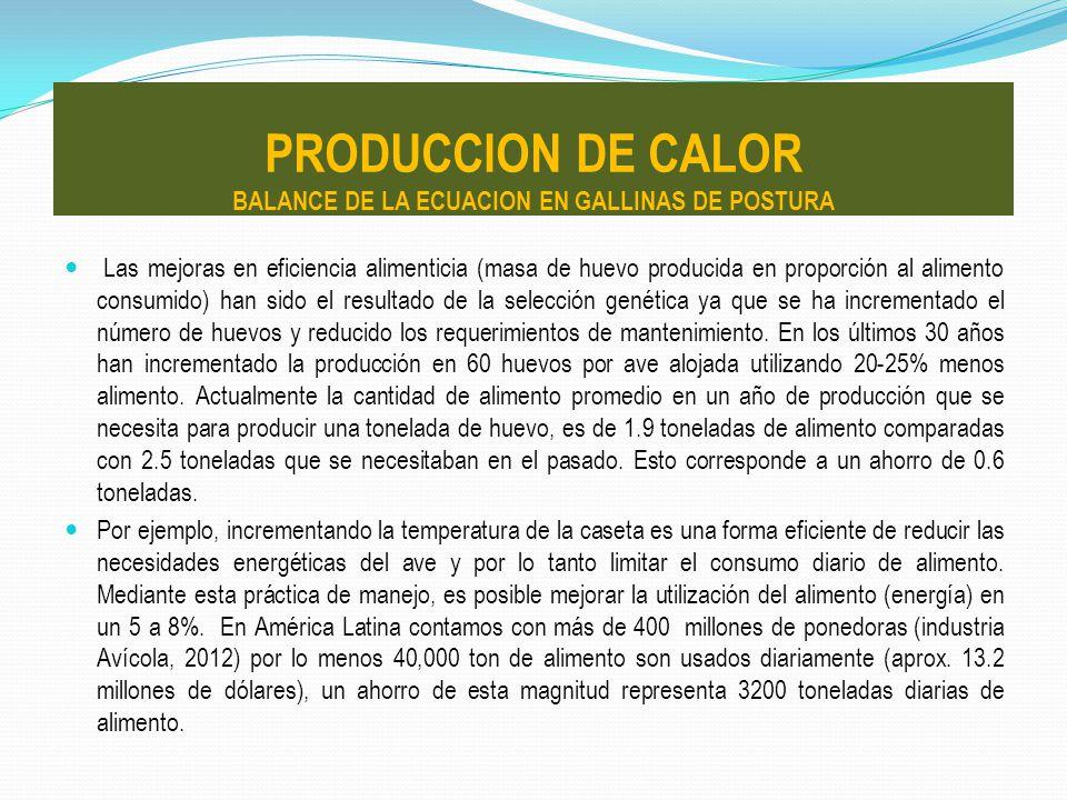 PRODUCCION DE CALOR BALANCE DE LA ECUACION EN GALLINAS DE POSTURA