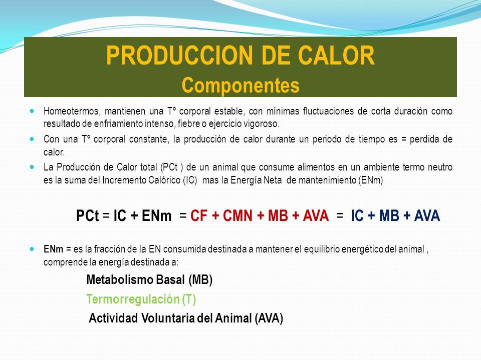 PRODUCCION DE CALOR Componentes