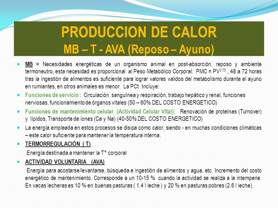 PRODUCCION DE CALOR MB – T - AVA (Reposo – Ayuno)