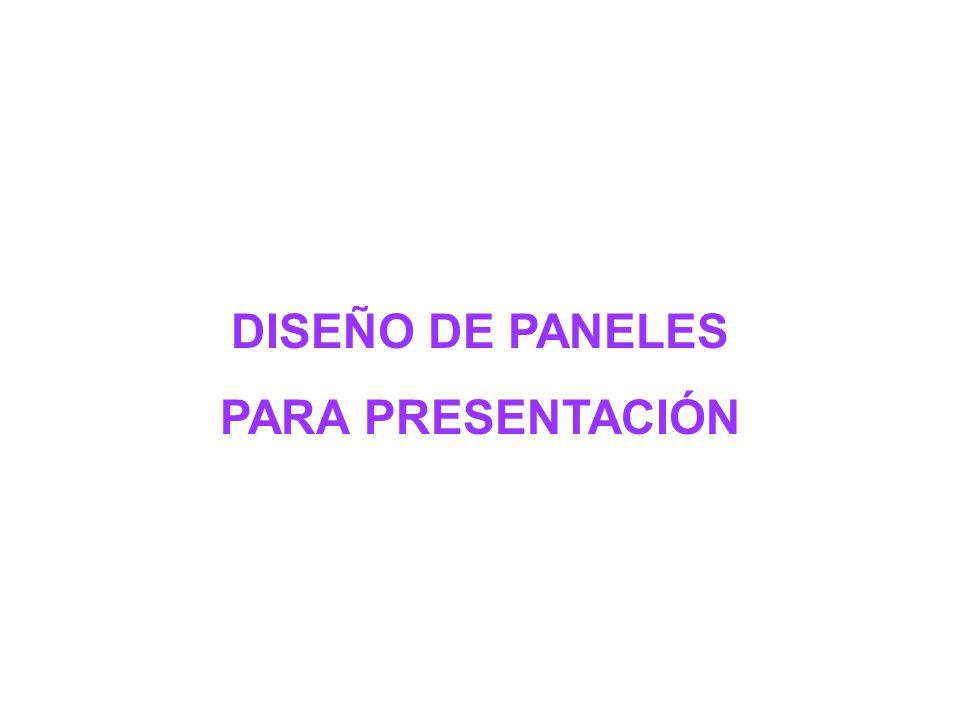 DISEÑO DE PANELES PARA PRESENTACIÓN