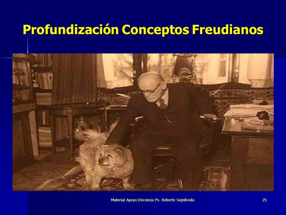 Profundización Conceptos Freudianos
