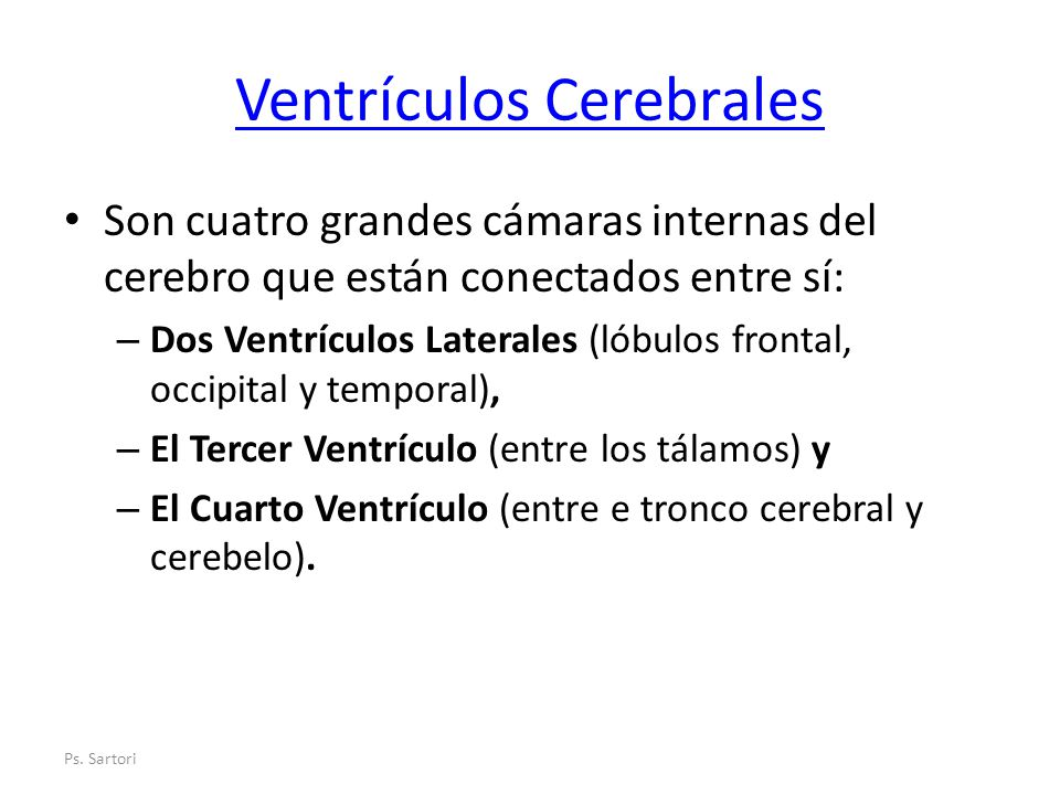 Ventrículos Cerebrales