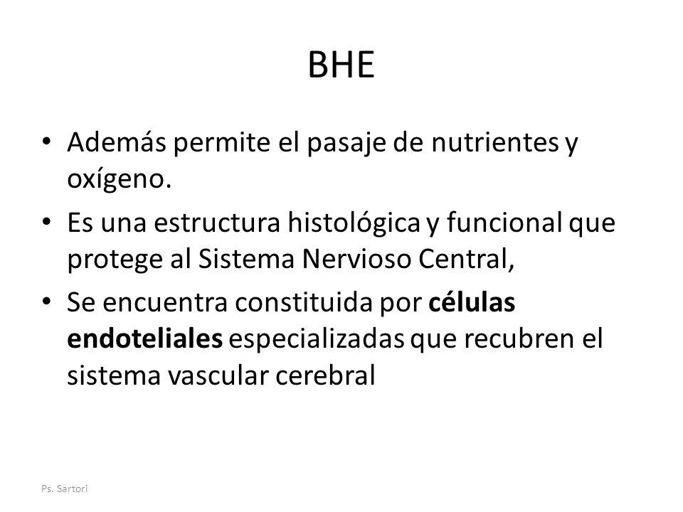 BHE Además permite el pasaje de nutrientes y oxígeno.