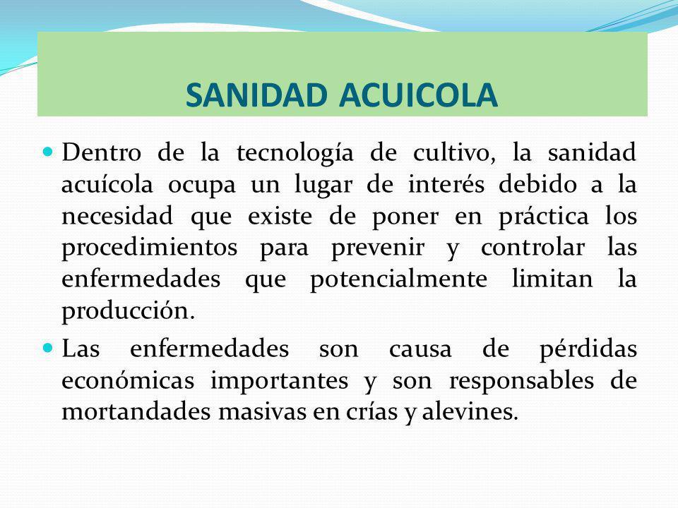 SANIDAD ACUICOLA