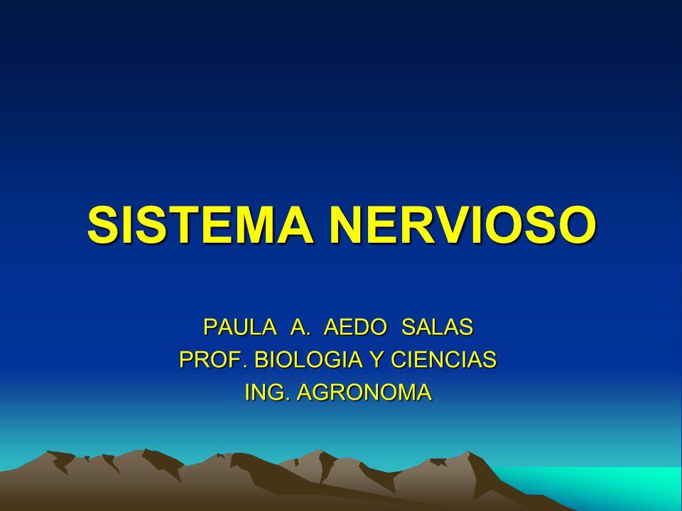 PAULA A. AEDO SALAS PROF. BIOLOGIA Y CIENCIAS ING. AGRONOMA
