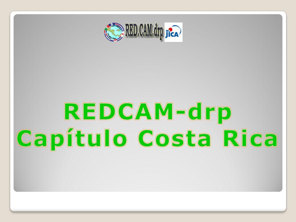 REDCAM-drp Capítulo Costa Rica