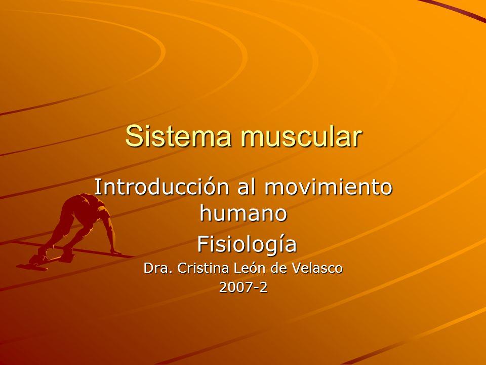 Sistema muscular Introducción al movimiento humano Fisiología