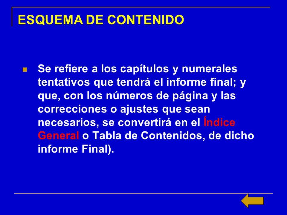 ESQUEMA DE CONTENIDO