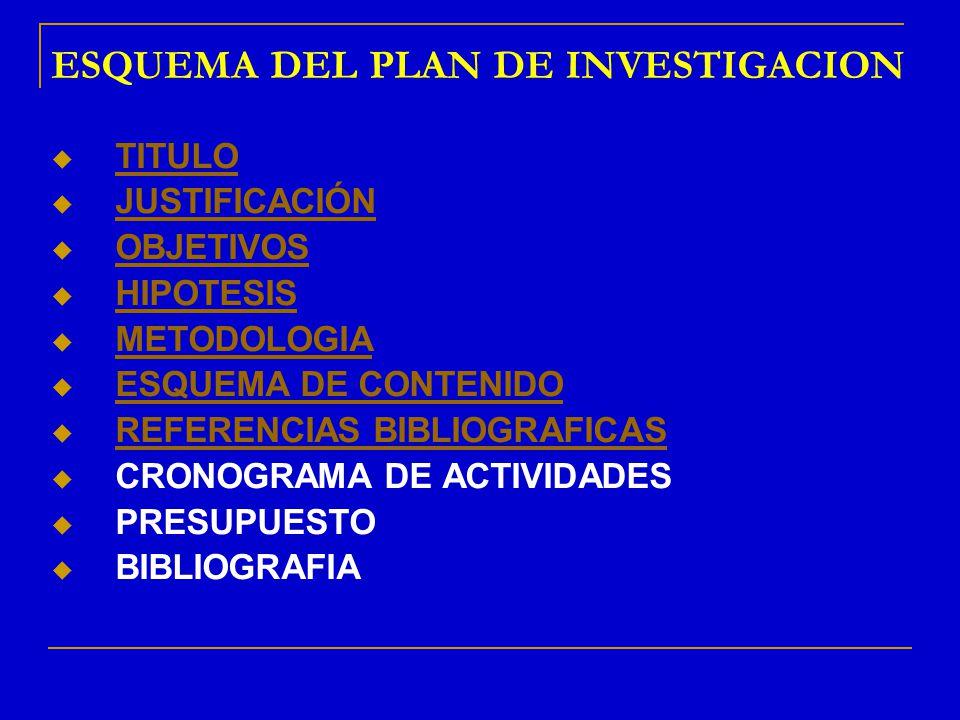 ESQUEMA DEL PLAN DE INVESTIGACION